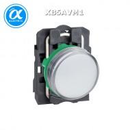 [슈나이더]XB5AVM1 /파일럿램프/플라스틱 베젤 AC220V 백색
